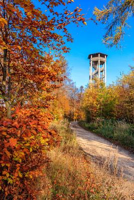 Herbst an der Ottoshöhe