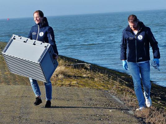 Seehund-Retter im Einsatz, die junge Kegelrobbe wurde für gesund befunden und darf sich weiter in der Sonne räkeln