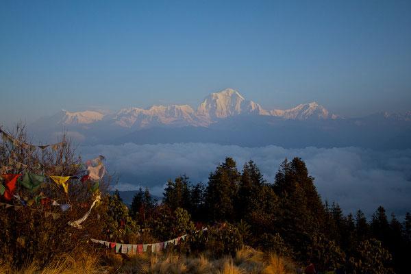 NEPAL   Anapurnatrek