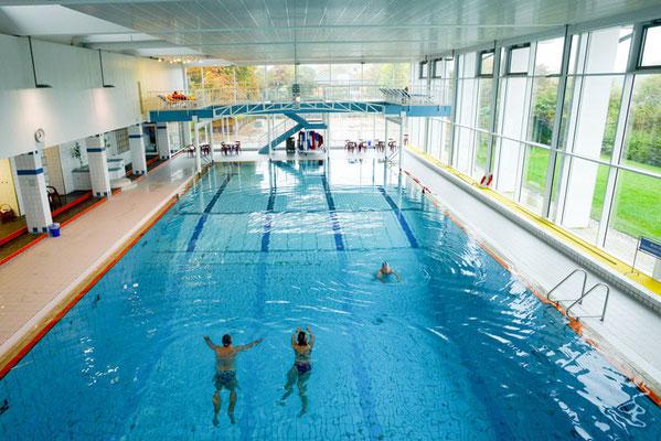 Schwimmerbecken im Freizeitbad Edingen-Neckarhausen - Foto: Marcus Schwetasch