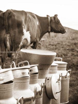 Milchkannen