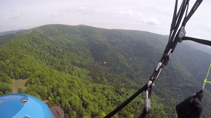 fliegen am Le Markstein im Elsass (Frankreich)