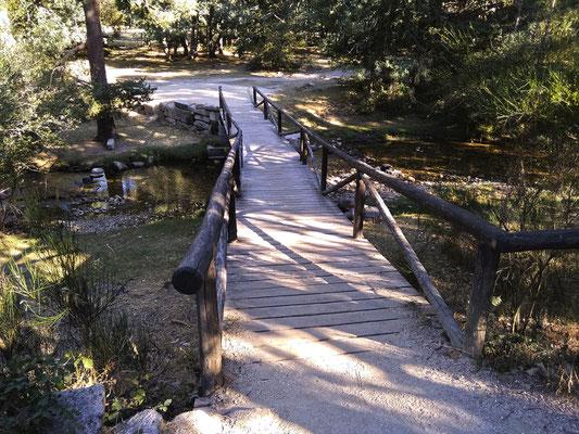 Puente sobre el río Eresma