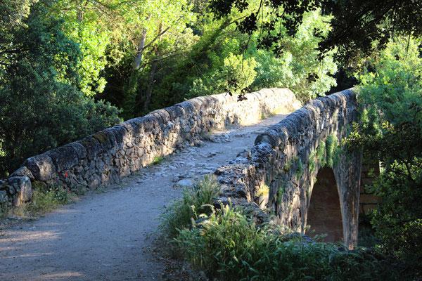 Puente de las Covatillas