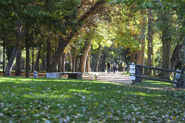 Alameda de El Parral en Segovia
