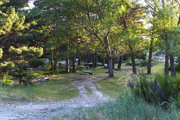 Área Recreativa La Panera en El Espinar (Segovia)