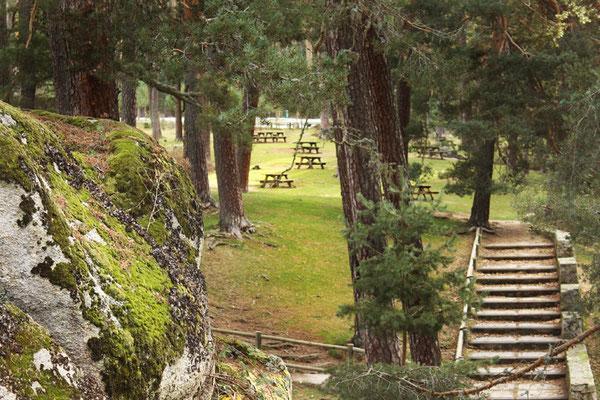 Area Recreativa Boca del Asno en Segovia - Segovia un buen plan