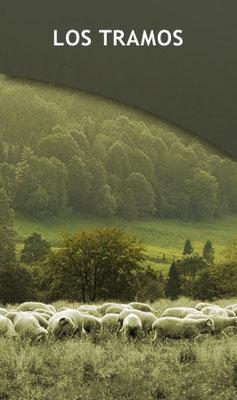 Los Tramos de la Vera de la Sierra de Segovia