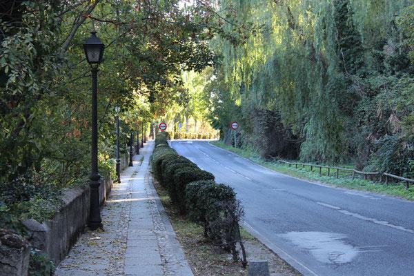 Paseo de Santo Domingo de Guzmán
