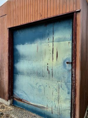 庭の隅の小屋の扉。この扉が好きなのです。蒼ノ扉!!!