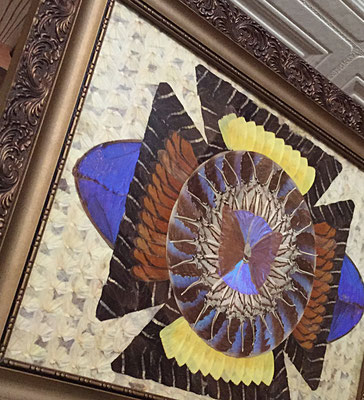 船員さんの家あるある「蝶額」!全部蝶の羽でできてます...素敵だけど怖いのは私だけ?(蝶、めっちゃ苦手なのです)