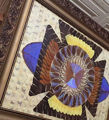 船員さんの家あるある「蝶額」!全部蝶の羽でできてます