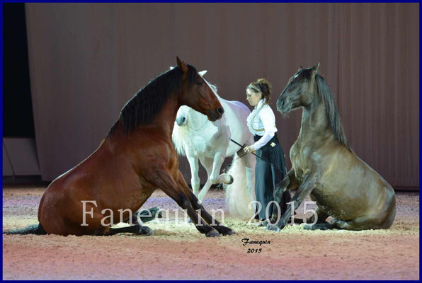 Cheval Passion 2015 - MISEC