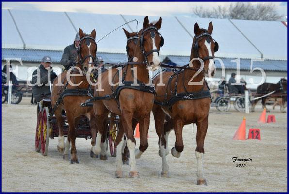 Cheval Passion 2015 - Démonstration d'attelage en team (4 chevaux) 4 chevaux KWPN