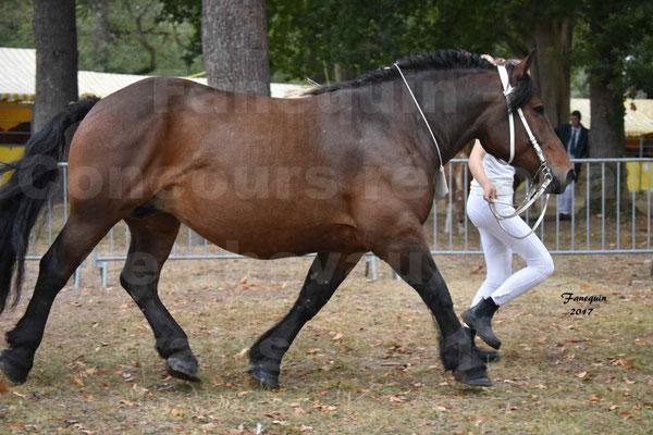 Concours Régional de chevaux de traits en 2017 - Jument & Poulain Trait COMTOIS - CANDY DE GRILLOLES - 02
