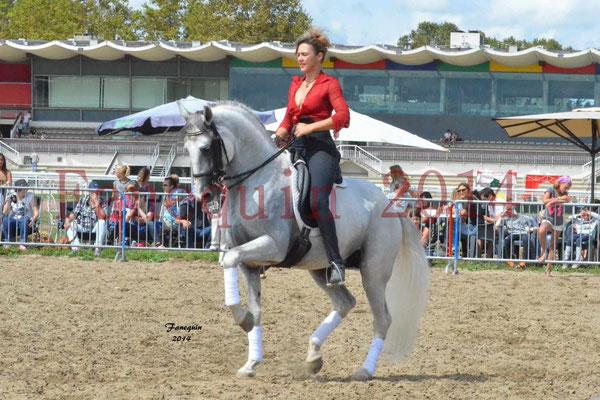 Salon Cheval ROI de Toulouse 2014 - Cavalière & Cheval Espagnol reprise de dressage