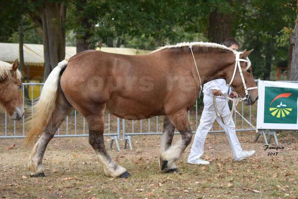 Concours Régional de chevaux de traits en 2017 - Jument & Poulain Trait COMTOIS - BESMA DE GRILLOLES - 01