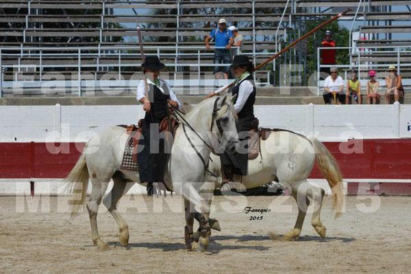 Feria du cheval 2015 à MEJANES - 1