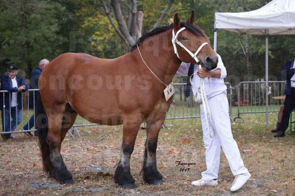 Concours Régional de chevaux de traits en 2017 - Jument & Poulain Trait COMTOIS - COMETE DE GRILLOLES - 01