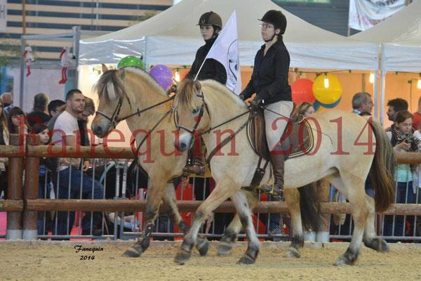 EQUITA-LYON 2014 - démonstration reprise - Poneys FJORDS