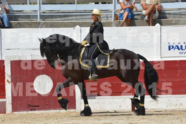 Feria du cheval 2015 à MEJANES - 3