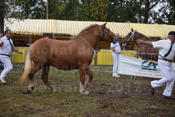 Concours Régional de chevaux de traits en 2017 - Trait COMTOIS  - EGLANTINE DE BENS - 16