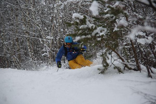 Cheget: Treeskiing