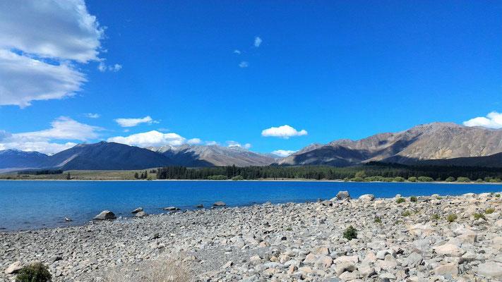 LAC TAKAPO ET ALPES NZ ILE DU SUD NZ