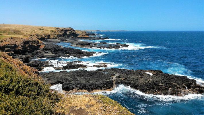 LA COTE SUD DE PHILLIP ISLAND A BLOW HOLE PHILLIP ISLAND VICTORIA AUSTRALIE