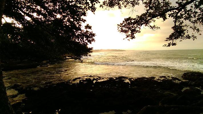 UN COUCHER DE SOLEIL PLAGE DE SABLE NOIRE DEVANT LA GUEST A CAHUITA COSTA RICA