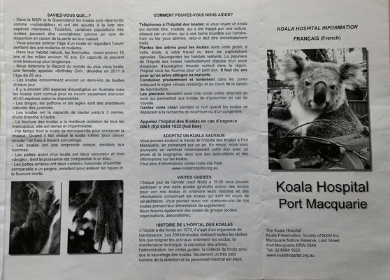 DOCUMENT DE LA CLINIQUE DES KOALAS A PORT MACQUERIE AUSTRALIE