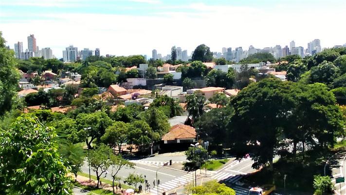 VUE DU PONT METRO SUMARE AVENUE PAUL 6 QUARTIER VILA MADALENA A SAO PAULO BRESIL