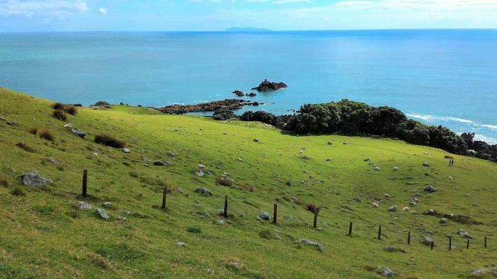 AU MONT MAUNGANUI A TAURANGA NZ