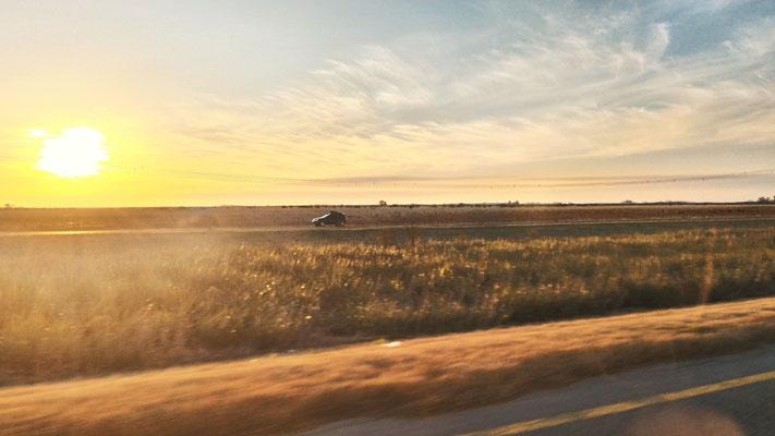 A 200 KM AU NORD DE BUENOS AIRES SUR LA ROUTE EN DIRECTION D'IGUAZU ARGENTINE