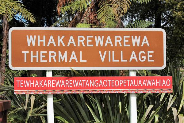THERMAL VILLAGE WHAKAREWAREWA ENTRAINEMENT POUR LE SCRABBLE A ROTORUA NZ