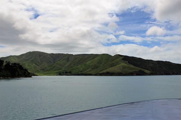 VUE DEPUIS AVANT DU FERRY LE CHENAL DU COOK STRAIT ILE DU SUD NZ