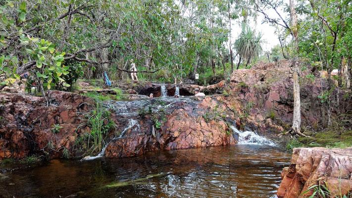 BASSINS A BULEY ROCKHOLE LITCHFIELD NP SUD DE DARWIN AUSTRALIE