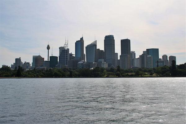 LA CITY DEPUIIS LE JARDIN BOTANIQUE DE SYDNEY AUSTRALIE
