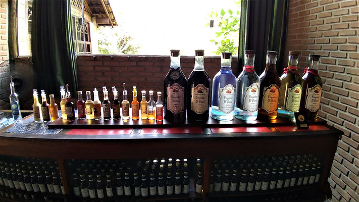 LES DIFFERENTES PRODUCTIONS DE LA DISTILLERIE ENGENHO OURO A PARATY BRESIL