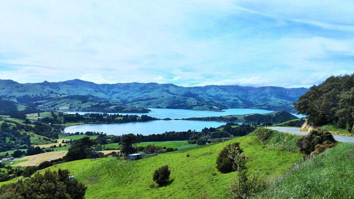 DEPUIS LE COL DIERCTION CHRISTCHURCH VUE SUR LA BAIE D'AKAROA ILE DU SUD NZ