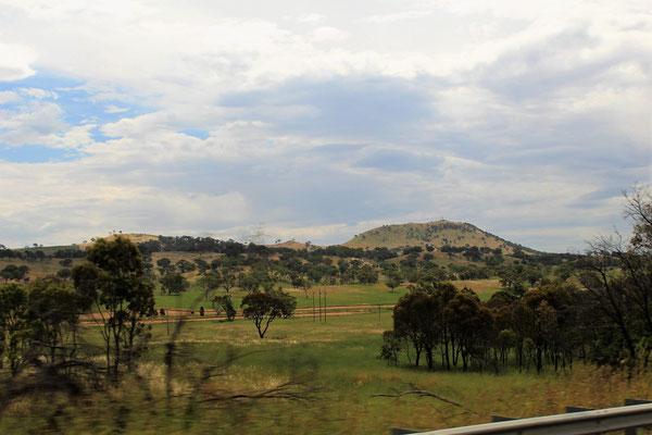 PAYSAGE ENTRE CANBERRA ET ALBURY AUSTRALIE