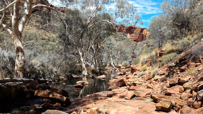 PAYSAGE RANDO KINGS CREEK WALK A KINGS CANYON NP CENTRE ROUGE AUSTRALIE
