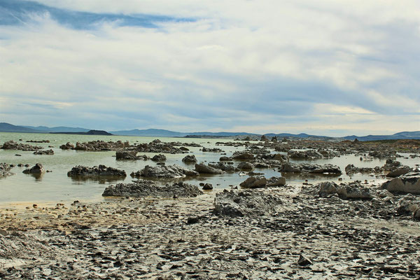 CONCRETIONS A MONO LAKE LEE VILING CALIFORNIE
