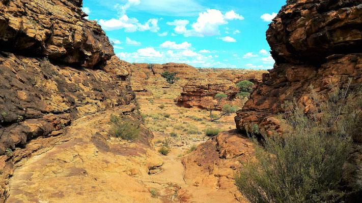 PAYSAGE SUR LE PLATEAU DE RIM WALK  A KINGS CANYON NP CENTRE ROUGE AUSTRALIE