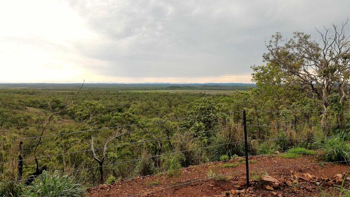 PAYSAGE DE OUTBACH PENDANT VISITE DE LA FERME OAKEY DOWNS A 100KM AU SUD DE DARWIN AUSTRALIE