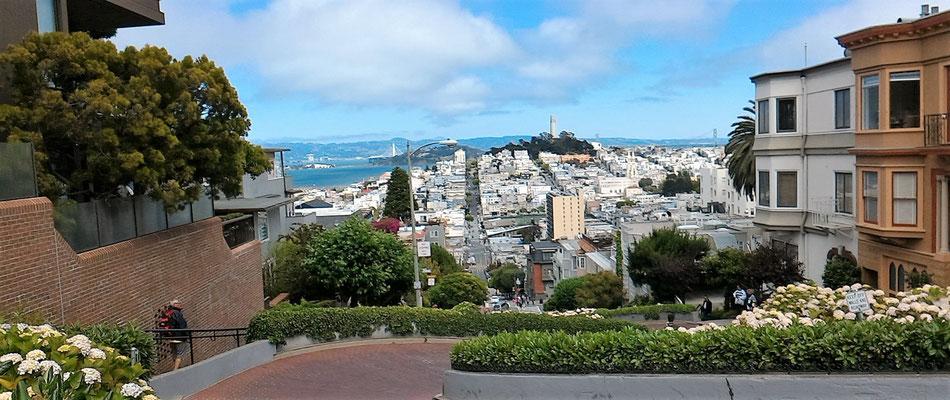 VUE DU HAUT DE LA LOMBART STREET SAN FRANCISCO CALIFORNIE
