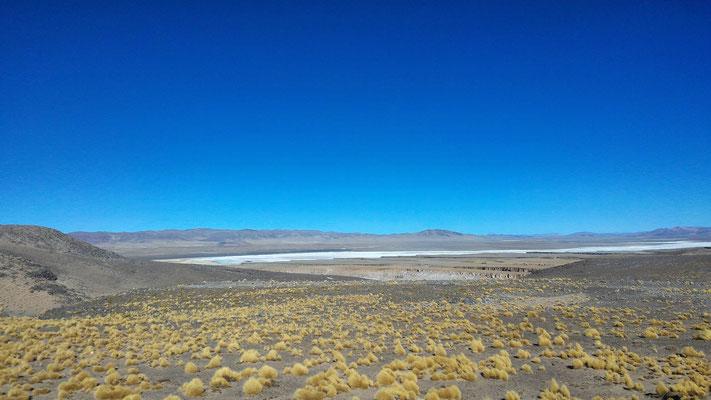 SALINES ENTRE SALTA ET SAN PEDRO DE ATACAMA COTE CHILI