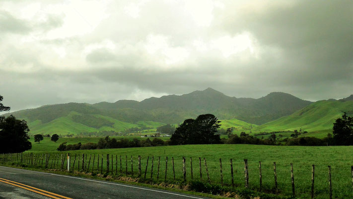 PAYSAGE ENTRE OKATO  ET NEW PLYMOUTH ILE DU NORD NZ