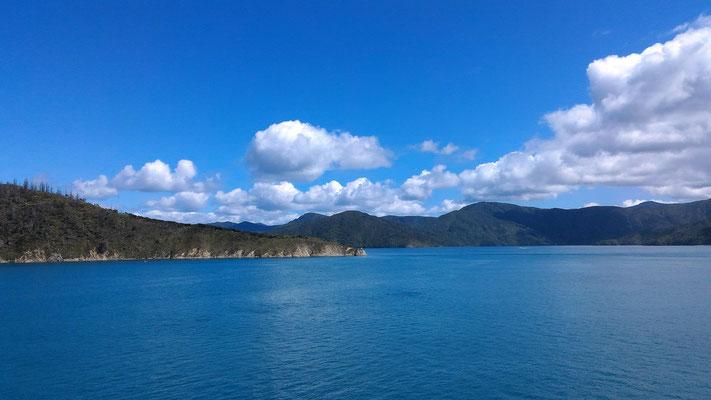 PAYSAGE DU COOK STRAIT ILE DU SUD DEPUIS LE FERRY NZ