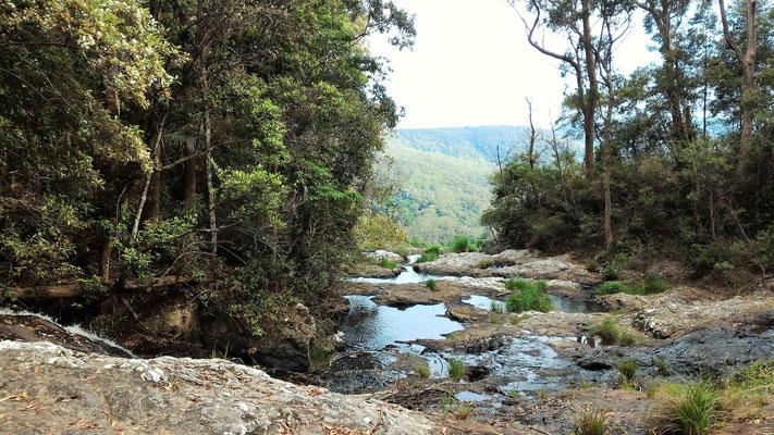 LA PURLIING BROOK FALLS A SPRINGBROOK NP AUSTRALIE